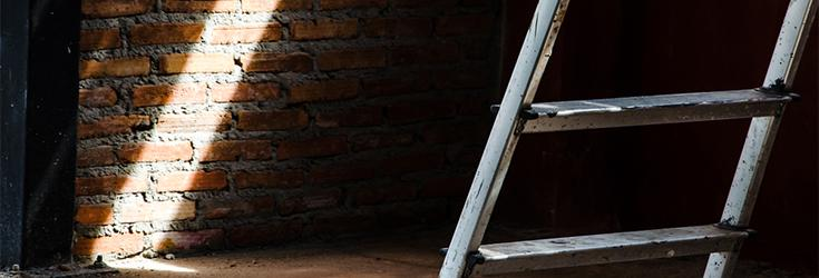 Ladders to success: What ladders have done for us