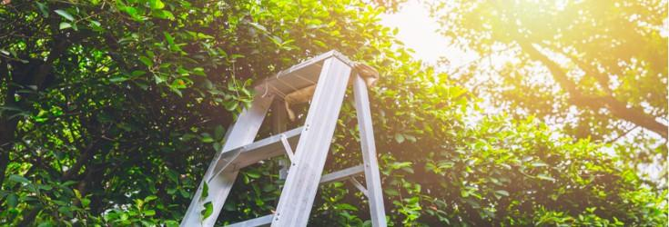 Quick tips for common Spring ladder jobs