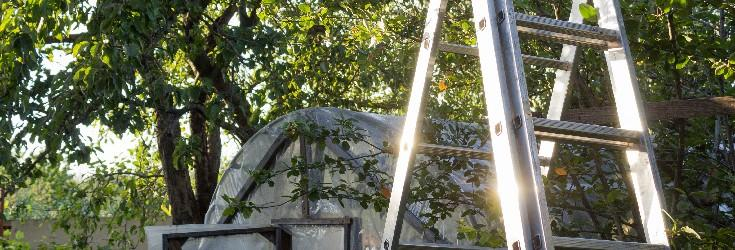 The 3 best gardening ladders for Spring jobs in 2021