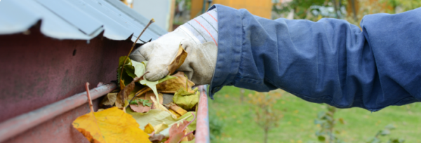 Are you properly equipped for cleaning the gutters?