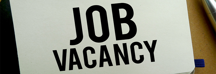 We're hiring! Job opening for a Ladder Inspection Co-Ordinator