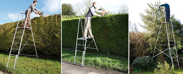 using a step ladder in the garden